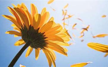 长沙夏季白癜风患者该怎样养生